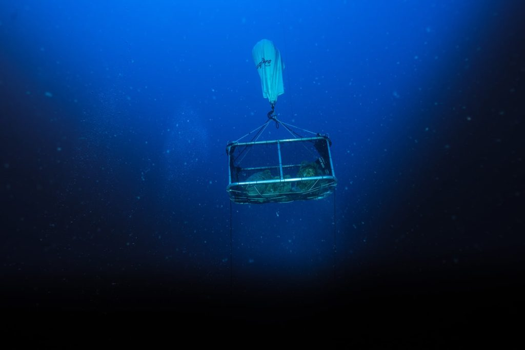 Phoenician Shipwreck 2017-a